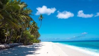 Casting candidati ambosessi single per programma TV in una località tropicale